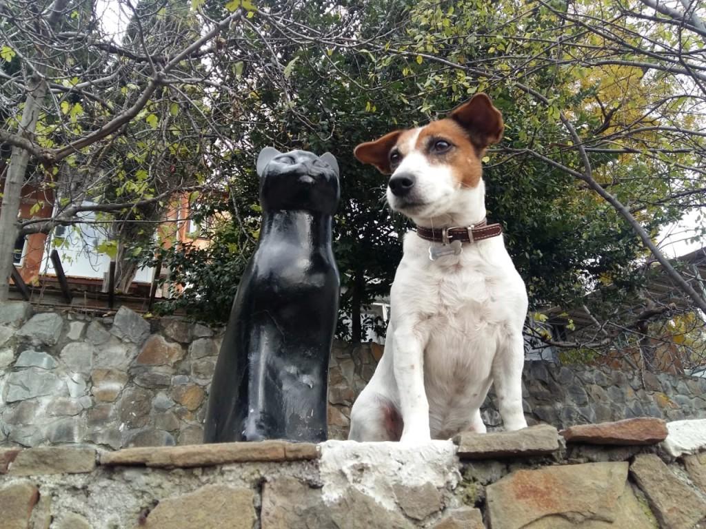 В Гурзуфе у памятника кошке