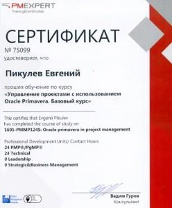 Сертификат малый