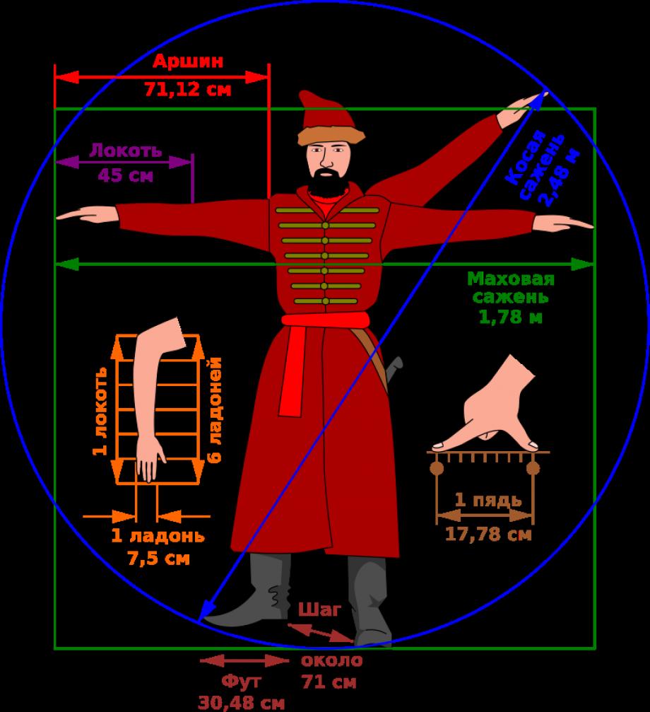 Соотношение единиц длины с пропорциями тела человека. Фото: wikipedia.org