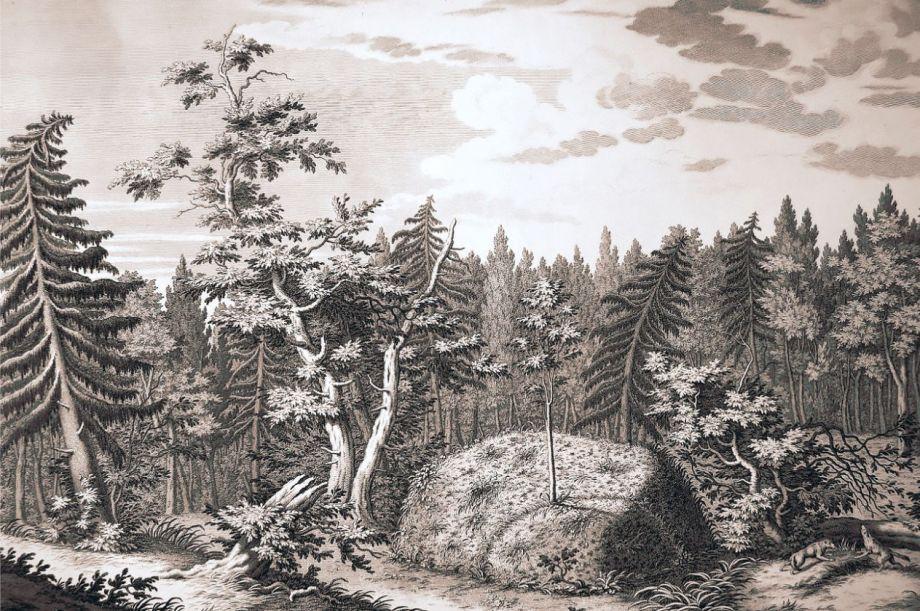 «Гром-камень в Лахтинском лесу». Гравюра Якоба Шлея по рисунку Юрия Фельтена. Фото: Wikipedia