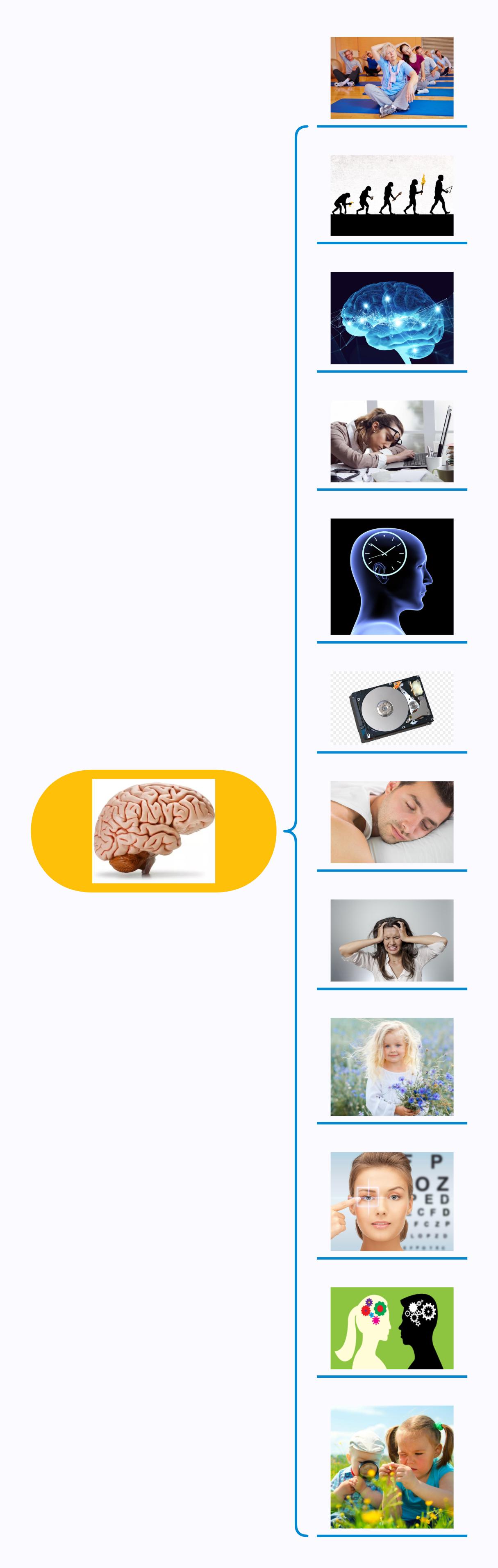 Правила мозга_рисунки